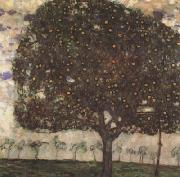 Gustav Klimt Apple Tree II (mk20) oil painting artist